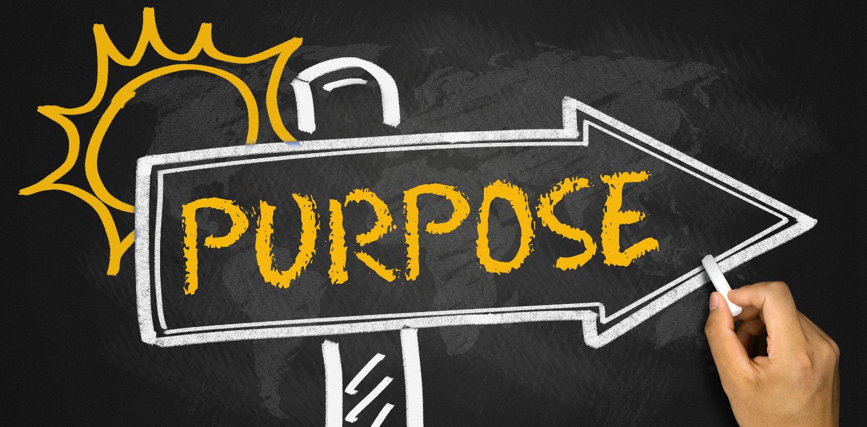 Purpose Economy (EN), Steward-Ownership (EN), Verantwortungseigentum (DE)
